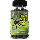 Black Spider, Черная Вдова, фото Черная Вдова